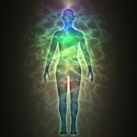 Chakra Energy Healing Reiki at Heart of Wellness in Olympia WA