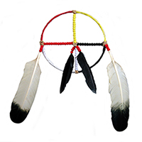 Heart of Wellness Medicine Wheel Shaman Healing Olympia WA