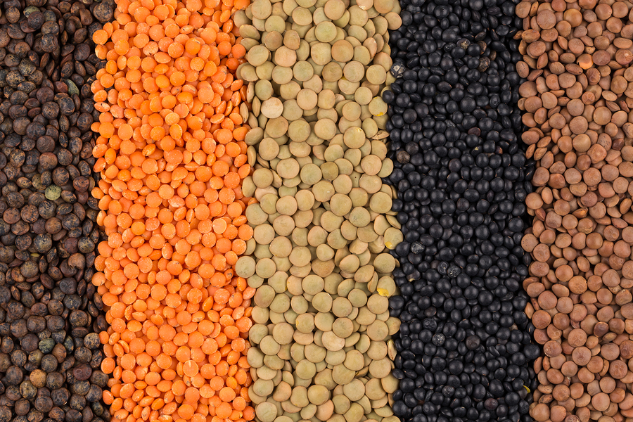 Lentils for a healthy you